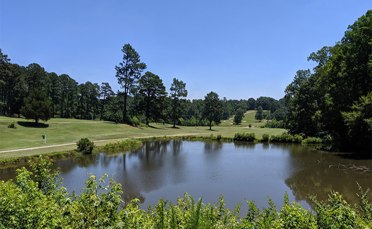 View of a pond on the course at Paschal Golf Club